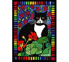 Black and White Cat in the Garden Photographic Print