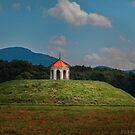 The Nacoochee Mound by Tunde Kulina