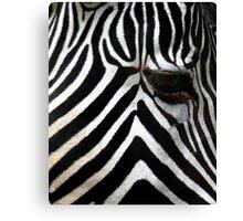 Zebra Eye African Wildlife Canvas Print