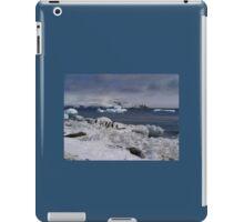 Antarctic adventure iPad Case/Skin