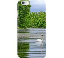 Swan Swimming in Spring iPhone Case/Skin