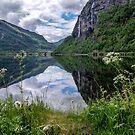 Norwegian Rhapsody by Chris Allen