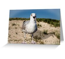 Seagulls Dune Greeting Card
