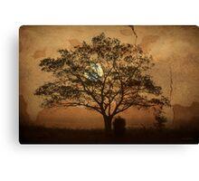 Landscape On Adobe Wall Canvas Print