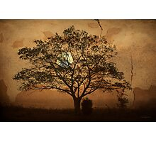 Landscape On Adobe Wall Photographic Print