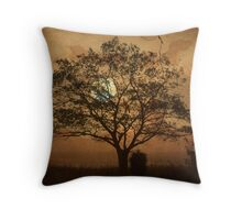 Landscape On Adobe Wall Throw Pillow