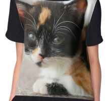 Beautiful kitten Chiffon Top