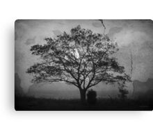 Landscape On Adobe Wall BW Canvas Print