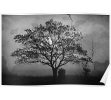 Landscape On Adobe Wall BW Poster