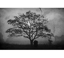 Landscape On Adobe Wall BW Photographic Print