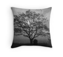 Landscape On Adobe Wall BW Throw Pillow