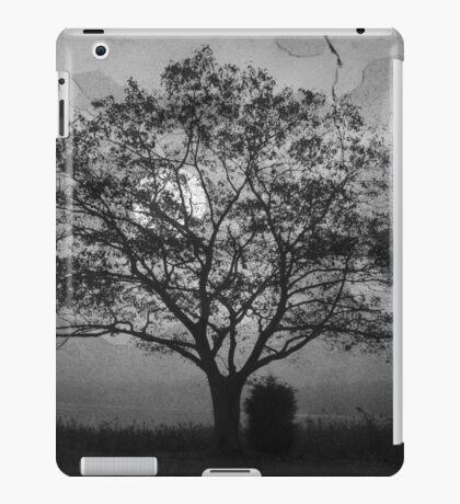 Landscape On Adobe Wall BW iPad Case/Skin