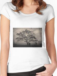 Landscape On Adobe Wall Toned Women's Fitted Scoop T-Shirt