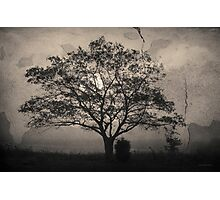 Landscape On Adobe Wall Toned Photographic Print