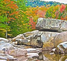 An Autumn View From the Creek by John Butler