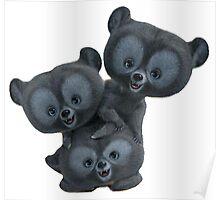 3 Bears  Poster