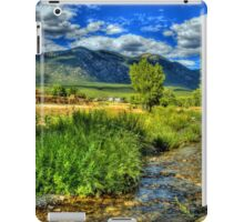 The Red Willow Creek on Taos Pueblo iPad Case/Skin