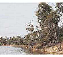 Murray River  by Kim Jackman