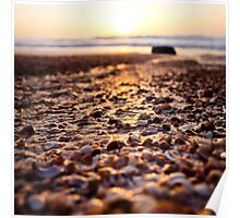 shells@sunset Poster