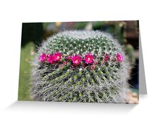 A mix of textures Greeting Card
