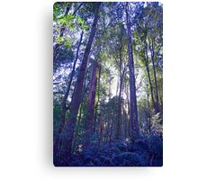 Sun Glimmers through the Trees - Triplet Falls Canvas Print