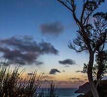 Australian Sunset by KimOgdenPhotos