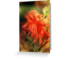 Fiery Lily Reflections Greeting Card