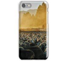 Drenching the sheep - Glenmore farm iPhone Case/Skin
