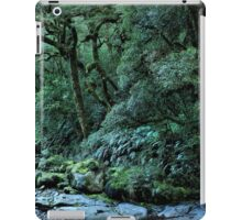 Chasm waterfall, Milford Sound iPad Case/Skin