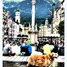 a hot day in Innsbruck... by ©The Creative  Minds