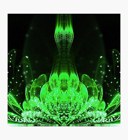 Matrix Flower - Abstract Fractal Artwork Photographic Print