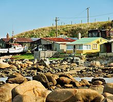Cosy Nook, aka Mullet Cove, Invercargill by Colin White