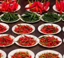 Chillies Brunei night market Sticker