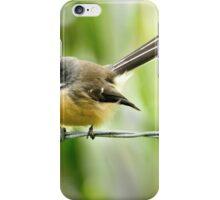 Bird on a wire, Akaroa iPhone Case/Skin