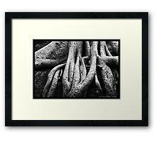 Pure Thomacheat #6. TANGLED Framed Print