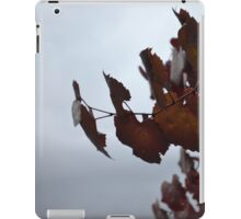 Stormy leaf iPad Case/Skin