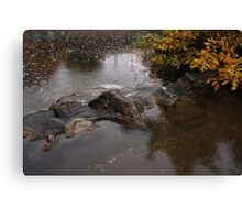 Pond in Japanese Garden Canvas Print
