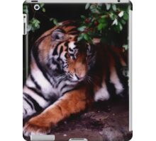 Such a Pretty Girl iPad Case/Skin