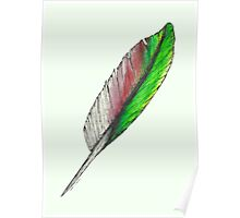 Grey and Green Feather Poster