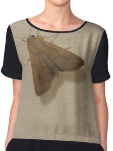 Moth Chiffon Top