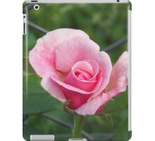 Pink rose and wire fence iPad Case/Skin