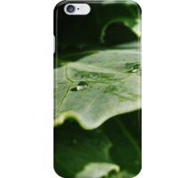 Summer morning iPhone Case/Skin