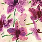 Orchids watercolor by annakul