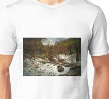 Snow in Madera Canyon Unisex T-Shirt