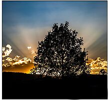 Sundown in La paz Photographic Print