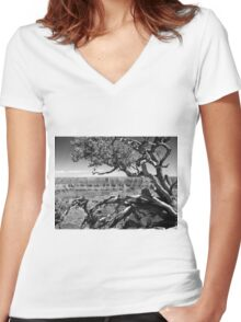 Tree Overlooking the Canyon Women's Fitted V-Neck T-Shirt