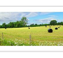 Panorama of Rural Sussex Sticker
