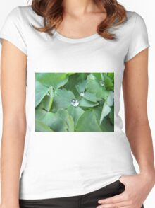 leaves with a drop Women's Fitted Scoop T-Shirt
