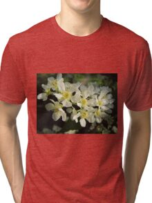 beautiful light on white flowers Tri-blend T-Shirt