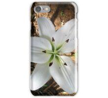 Lilium  iPhone Case/Skin